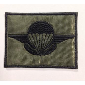 brevetto civile paracadutista francese
